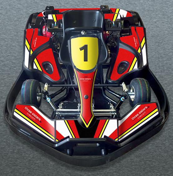 Biz Le Mans Twin